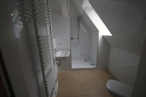 Haussanierung Badezimmer